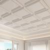 Detail-living-room-ceiling-crop